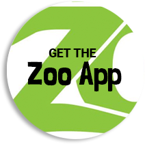 Green and white image with text that says Get the Zoo App