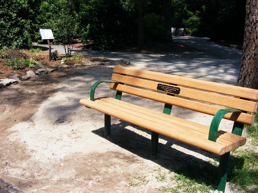 Bench at zoo
